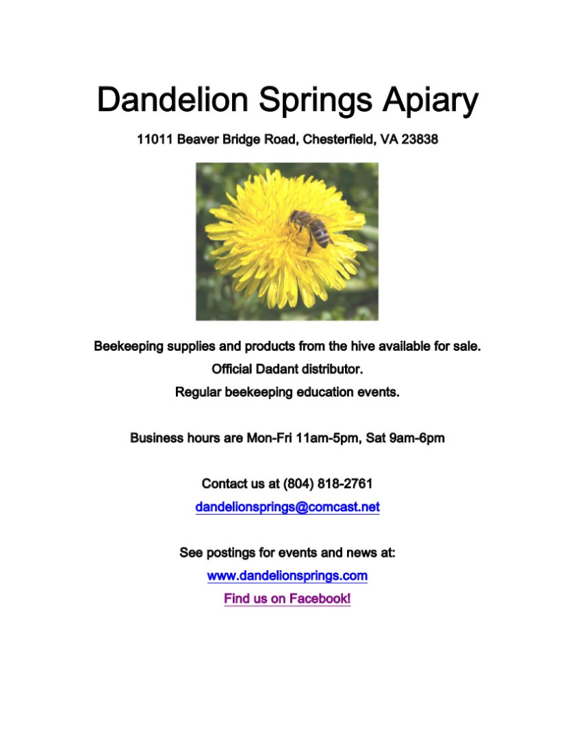 dandelion springs intro flyer